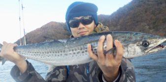 サワラ 太刀魚