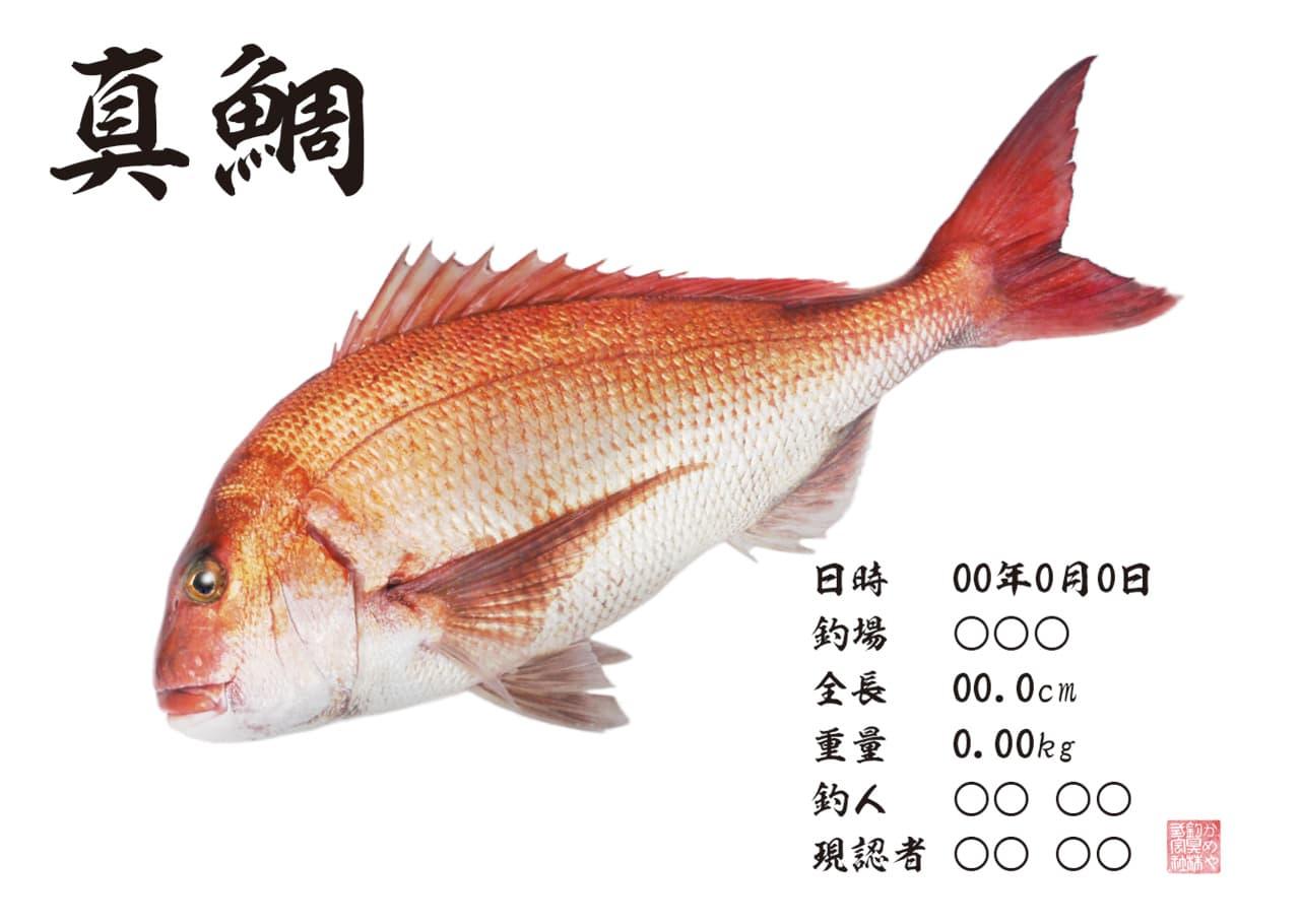 gyotaku2.jpg